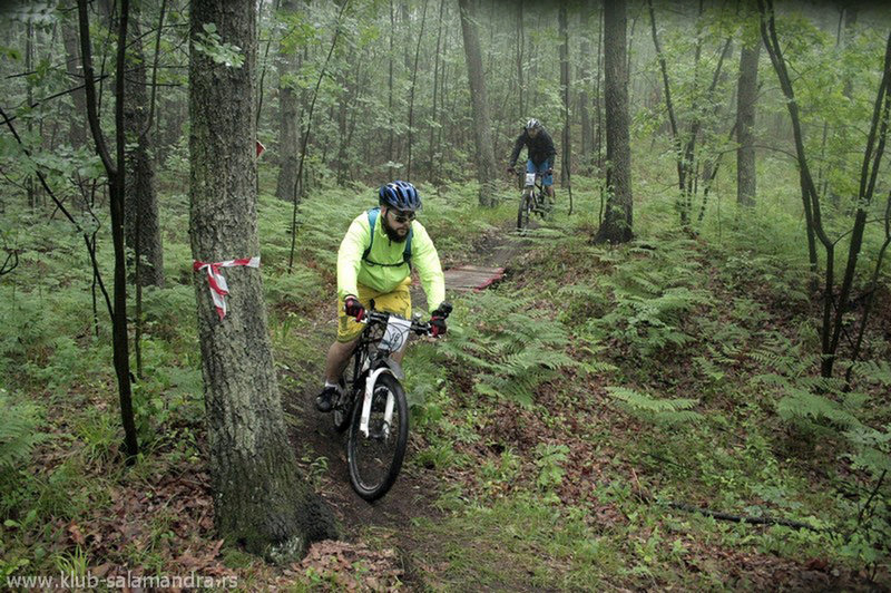 Racers pedaling through the Salamandra Trail on a foggy day.