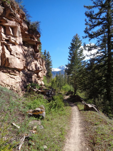 Making the change from double to singletrack.