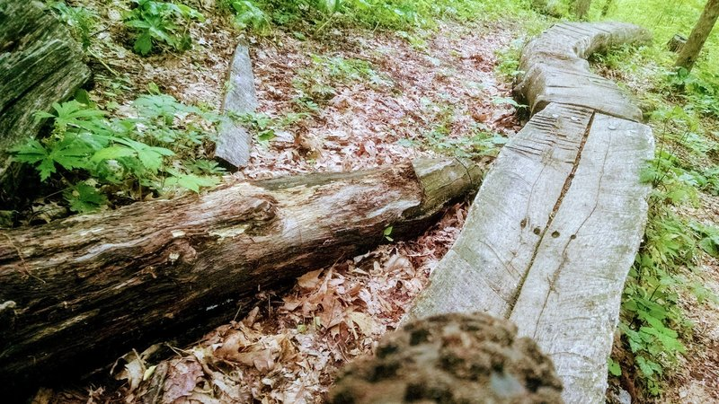 A log skinny on the Red Loop.