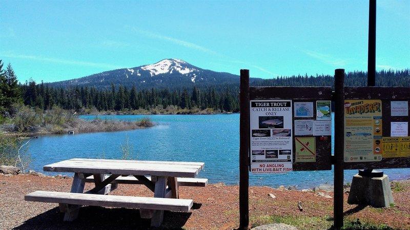 Fish Lake trail near boat launch, spring 2017.