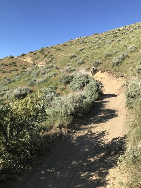 Steep, sandy and rocky sections definitely keep things exciting on the 8th Street Motorcycle Trail