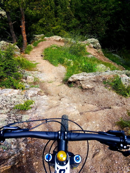 The Mustang Trail has some tricky drops. But it's still a super fun trail and one of my favorites!