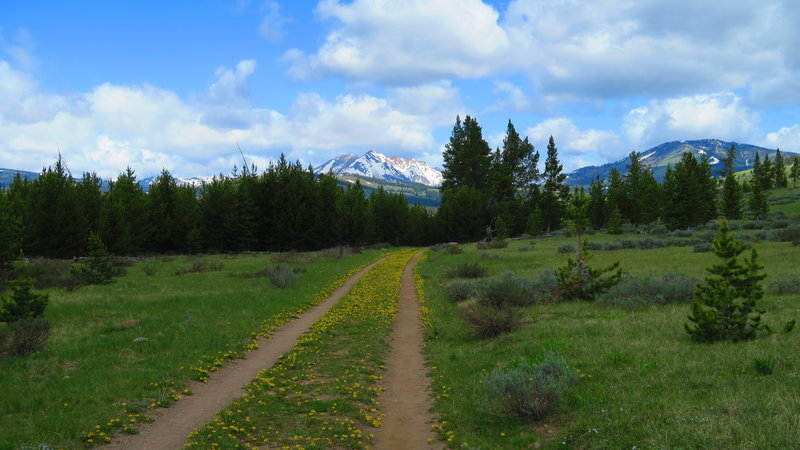 The views from the Bunsen Peak Road Trail don't disappoint.