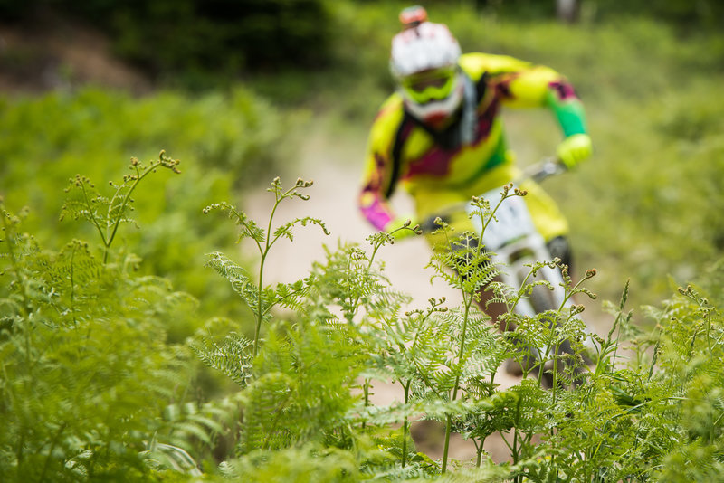 A racer flies by a bed of ferns near the top of Gnar-Gnar.