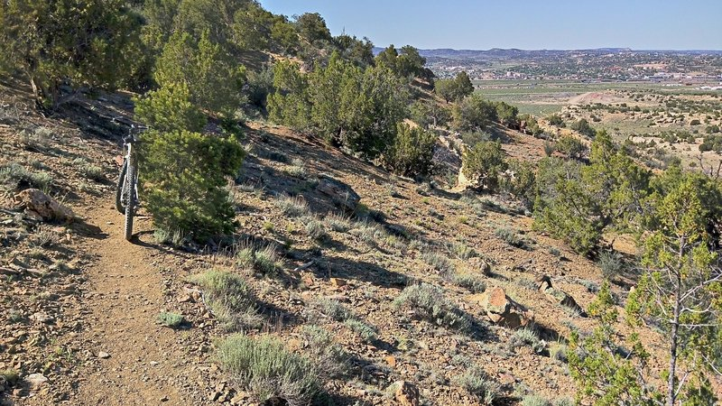 Pleasant singletrack with views of Gallup