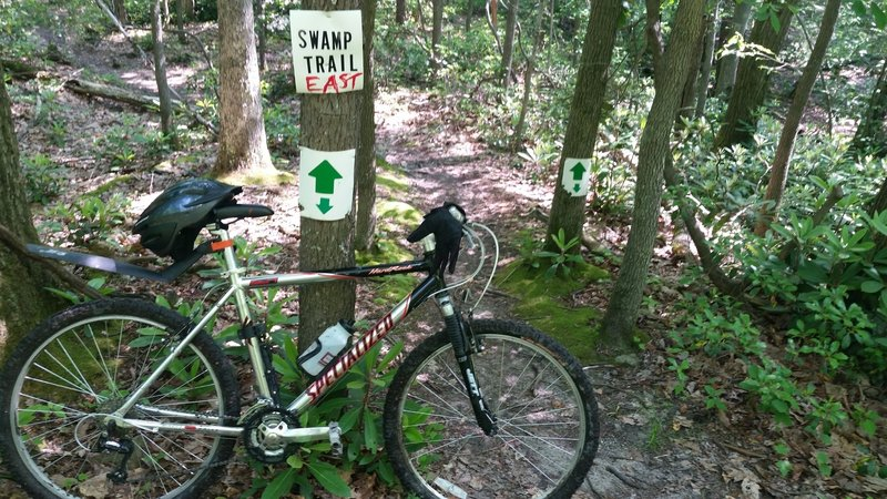 At the tail of Swamp Trail East