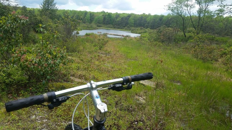 A quick lake view at the beginning of Swamp Trail East