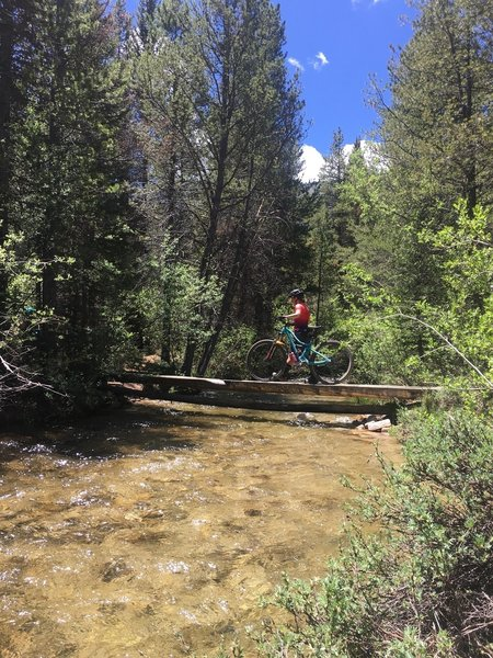 Most creek come with nicely built crossings.