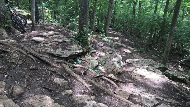 One of the toughest intermediate root/rock sections I've come across! The Rocky Top is a beautiful trail with great scenery.