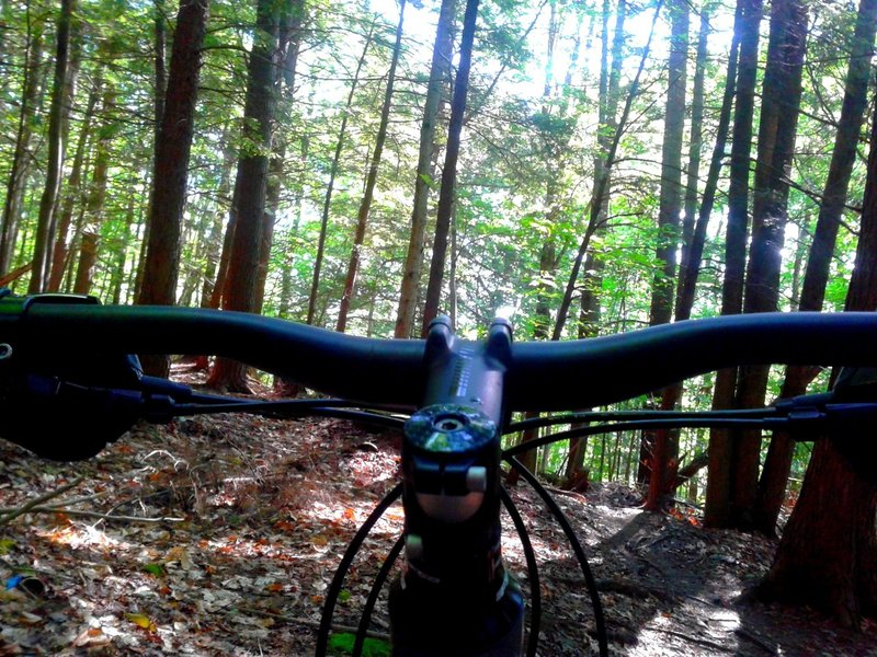 cockpit view of the lux trails at Cady Hill Forest, Stowe vt