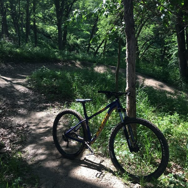 The Long Creek Trail at White Rock Iowa is an amazing ride.