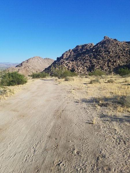 A strictly scenic view of what Joshua Tree has in store.