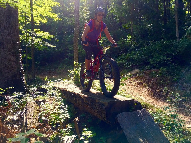 J. enjoys a log ride along the Breeden Ridge Trail.