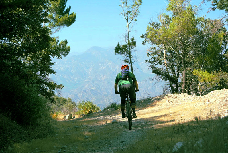 A wide section of Grizzly Flats gives leave to enjoy the vastness of the Angeles National Forest.