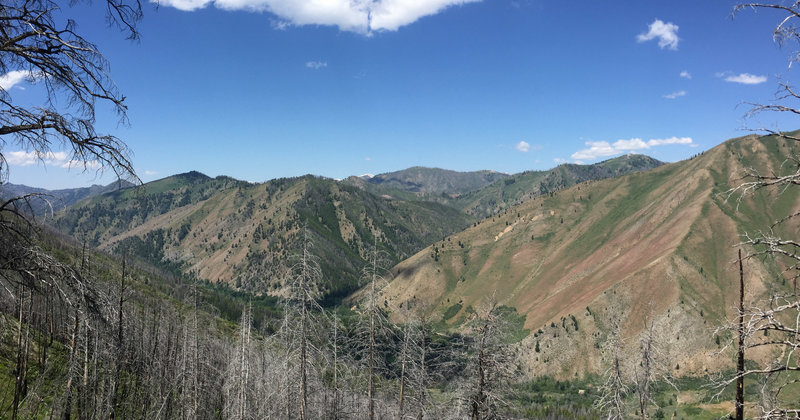 About half way up Warm Springs Trail.
