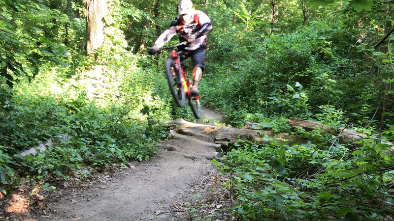 A very nice feature on IMBA after the descent. It's rollable, but jumping it is more fun!