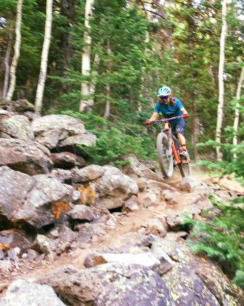 A rider dashes through this short rocky section on the Mesa Top Trail. I hiked it!