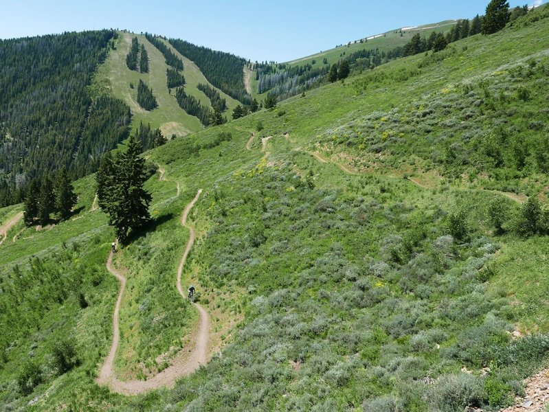 The Lupine Trail and nearby Saddle-Up Flow trail have great momentum and are super fun. They can be a bit dusty though.