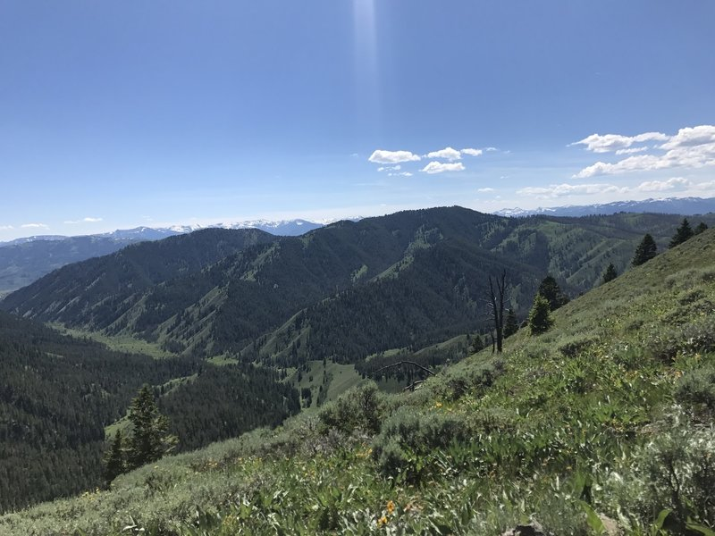 Looking south/southwest toward Wilson and Game Canyons from the Lookout Spur.