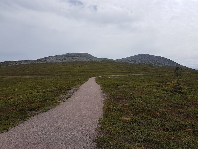 View of the trail, with the mountain we are circling in the background.
