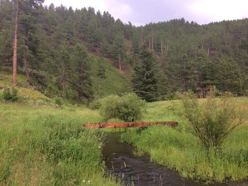 """Bridges along the trail have a very """"log crossing"""" feel."""