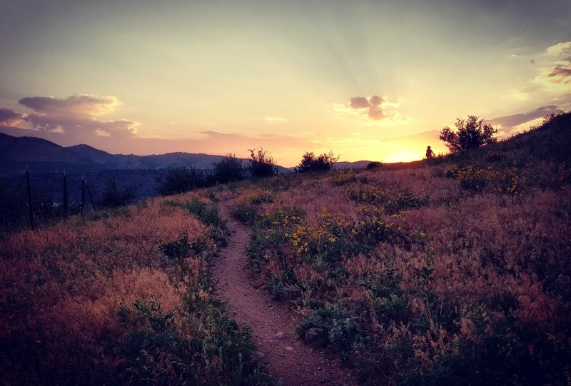 A beautiful sunset from a clockwise loop, turns out counterclockwise is the better way to enjoy the Rooney Valley Trail.