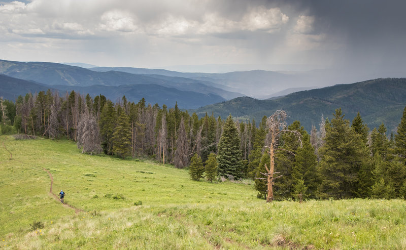 Outrunning a rain shower, heading down the top portion of Game Creek from the top of Vail Mountain.  So sweet!