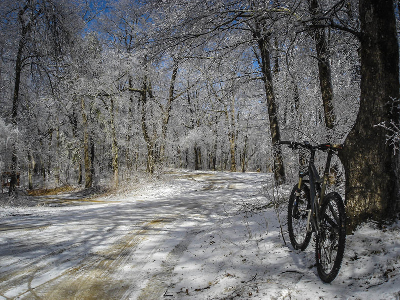 The sound of melting icicles falling to the forest floor all around you is surprisingly tranquil.  The sound of a large branch falling in the road 50 feet behind you not so much... but it will make you ride faster!