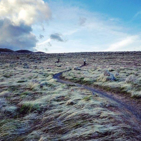 Windswept grassland in Crispy Bacon trail.