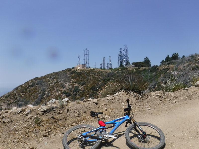 The goal is in sight: Mount Lukens and its transmission towers.