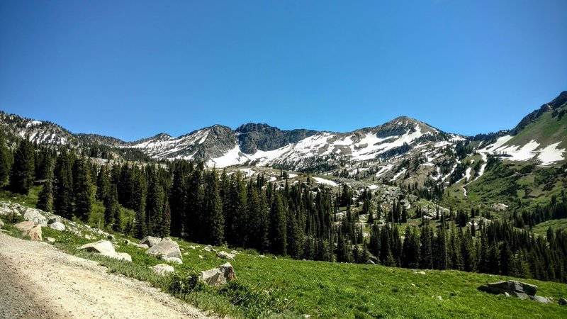 View of Devil's Castle from Albion Basin Summer Road.
