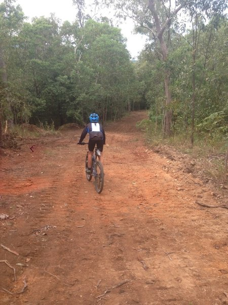 An open and clear trail during the dry season.
