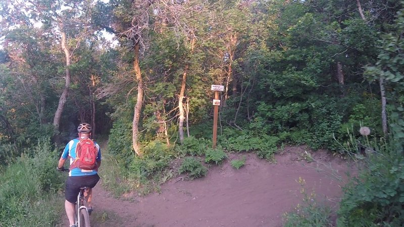 Trail on the left takes you back to the SW North Fork Park road and the jeep trail for Mule Shoe.