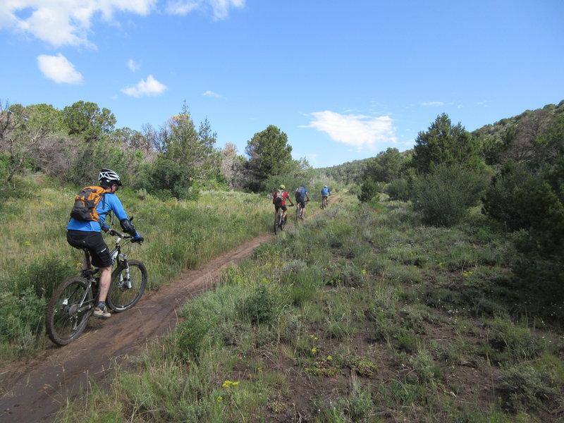 Upper flat on the Lower Springs Creek Trail.