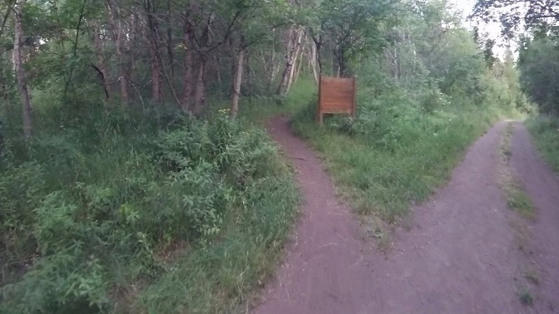 Singletrack trail on left to start the climb on Bicentennial Trail.