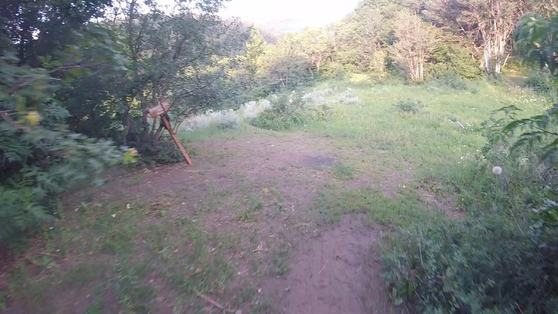 Where Bicentennial and Cutler Flat Trail merge.