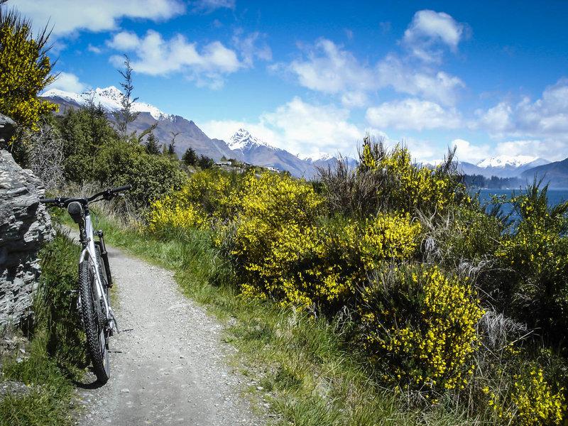 Spring has sprung along the shore of Lake Wakatipu
