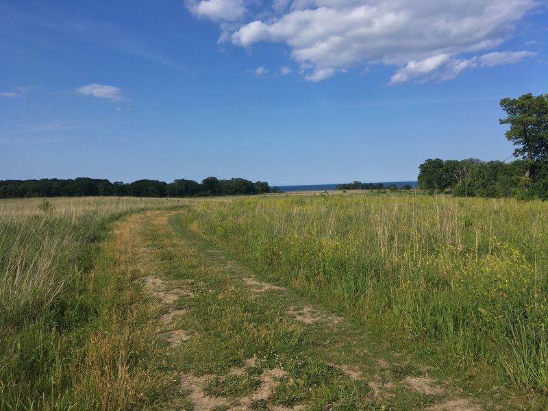 Southern portion of trail through the meadow looking east to Lake Michigan.
