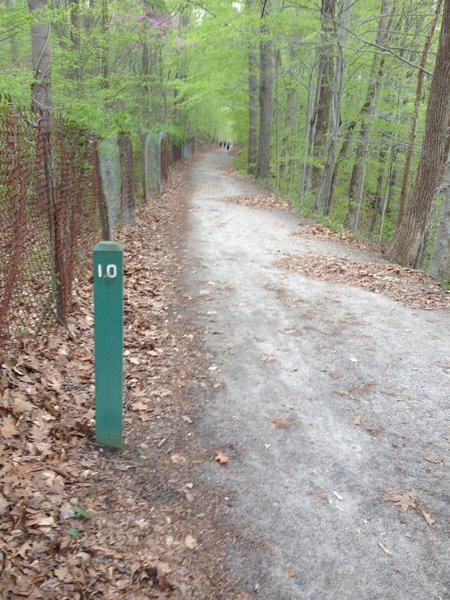 The Lake Accotink Trail includes mile markers. This portion is doubletrack