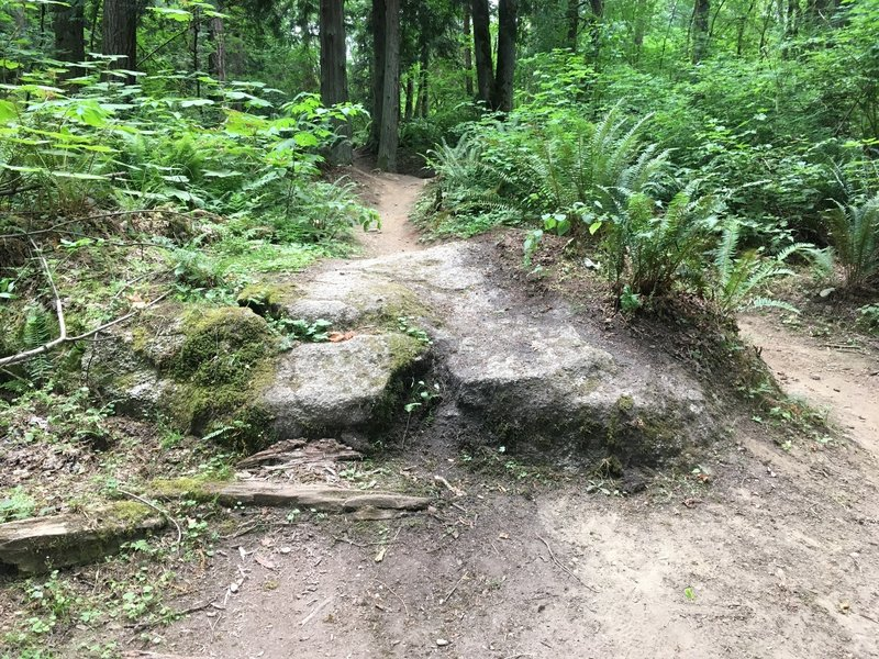 Nice boulder feature on Bear Way.