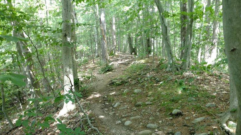 Average terrain on Heartbreak Ridge.