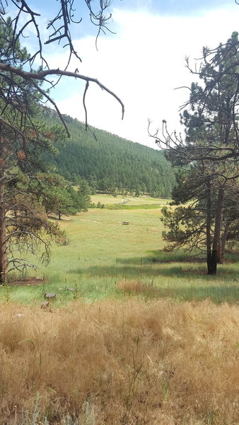 Great view across the meadow on the lower end of the trail.
