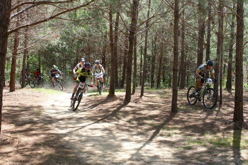 this is just after the the first right turn on the Mount Zion Trail during a 2016 race. The racer to the right is NOT on a prefered line. It was hit the tree, or dodge to the left of it - which led to this ride in the woods.