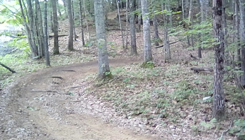 The Cross Topsham Trail as it switchbacks its way up a hill near Foreside Road.