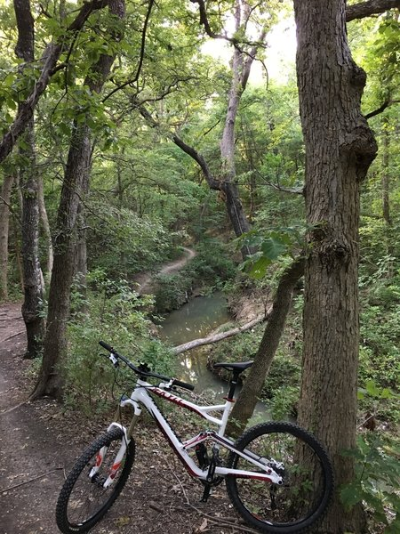 Amazing prepped trail just minutes from Dallas!! Exposed roots, downed trees, steep drop offs, and some creek crossings!!