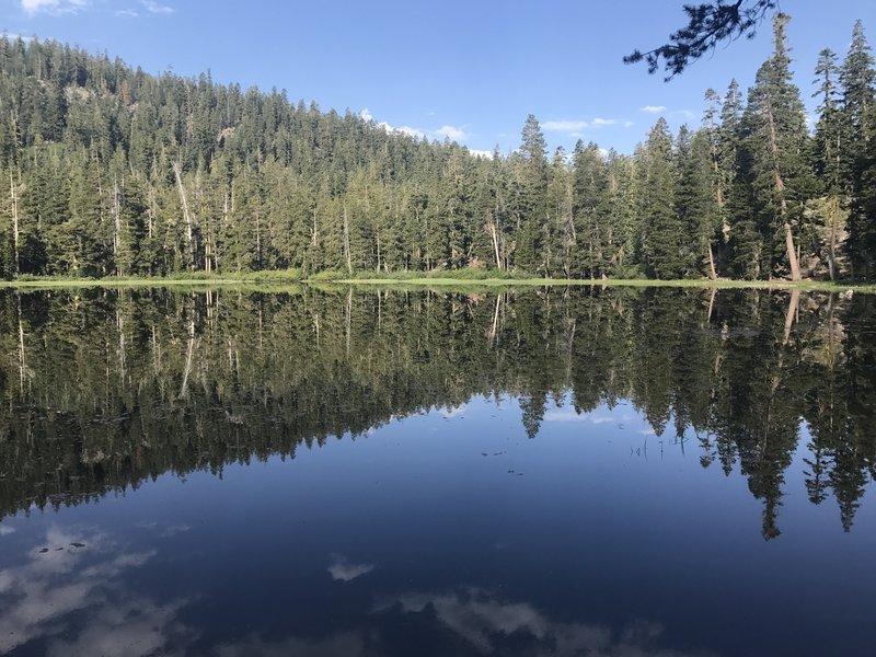 Watson Lake.