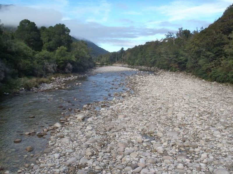 South branch of the Mokihinui River flanked by lowland bush.