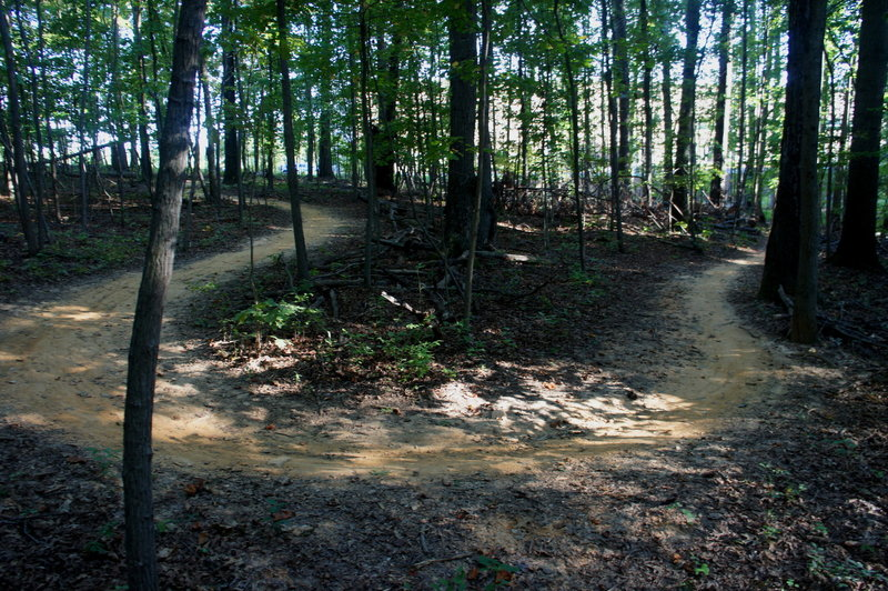 Tight turns on the trails at Lake Fairfax Park.