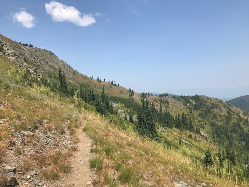Great trail that sidehills towards buck and iron mountains