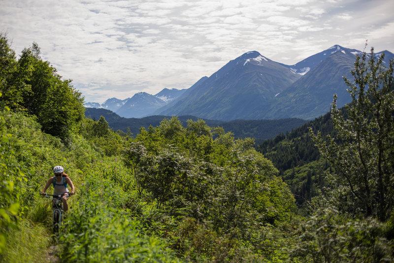 Biking up Devil's Creek Trail, looking back across the Chugach.